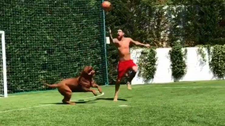 WATCH: Lionel Messi really enjoys making his dog look silly