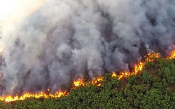 """PIC: Bray fire uncovers massive """"EIRE"""" sign from World War 2"""