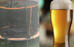 Man decides to sleep outside on a trampoline rather than wake up his angry girlfriend