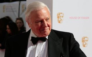 The BBC has revealed David Attenborough's next must-see nature documentary