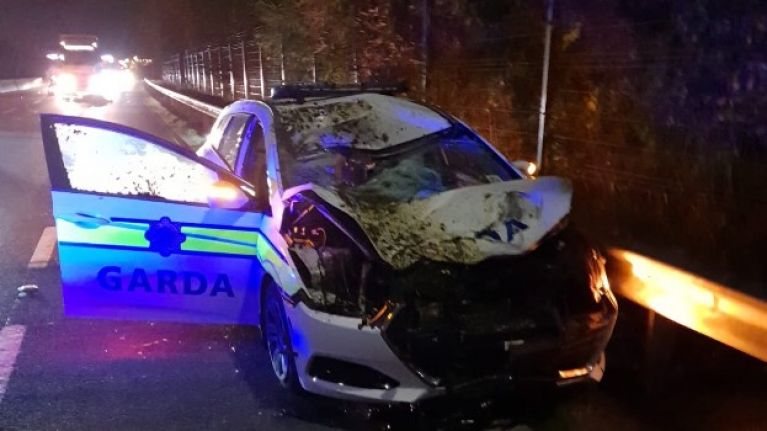 Gardaí hospitalised after patrol car collides with runaway horse in Limerick