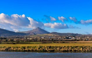 House worth €400k up for grabs in novel sporting fundraiser in Wicklow