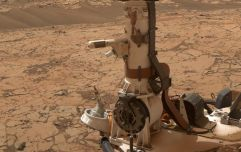 WATCH: NASA Rover shares incredible 360-degree 'selfie' from the surface of Mars