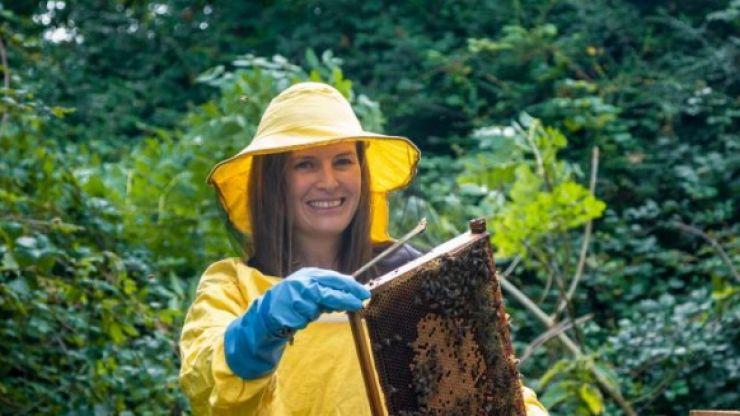 "Irish heather honey found to have health benefits ""comparable to manuka honey"""