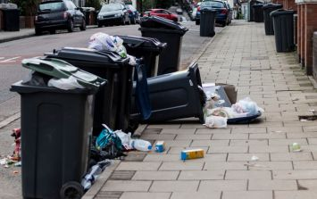 """Fingal County Council warns public of """"unauthorised rubbish collector"""""""
