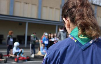 Scouting Ireland funding halted until current Board of Directors steps down