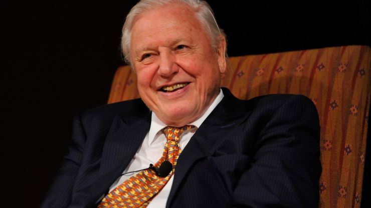 David Attenborough has revealed exactly when he'll go into retirement