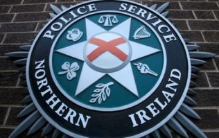 A man in his 20s has died after being struck by a falling tree in Armagh