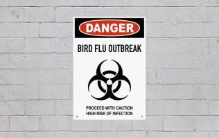 A case of bird flu has been confirmed in Tipperary