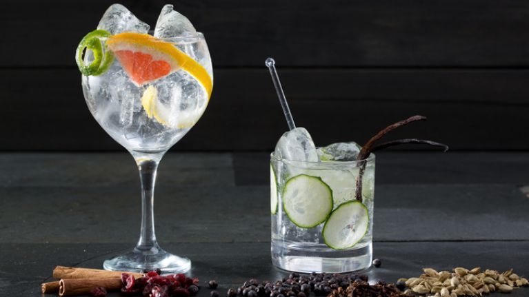 Forget book clubs! Ireland is about to get its first Gin & Tonic club