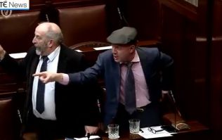 WATCH: Dáil briefly suspended following massive row between three TDs
