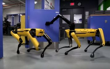 This footage of highly advanced, dog-like robots is causing everyone to freak out