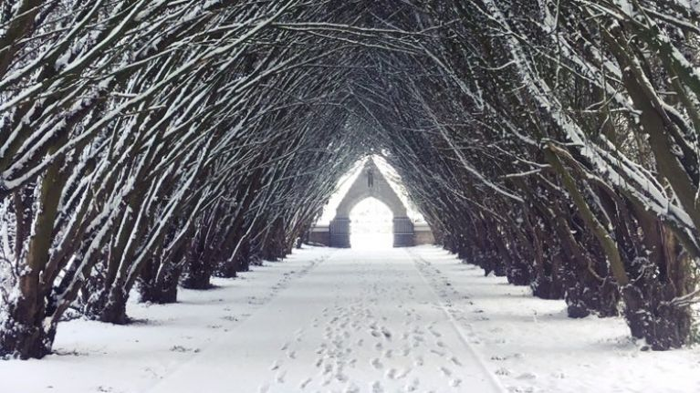 PICS: There have been some absolutely stunning images of the snow sent into us