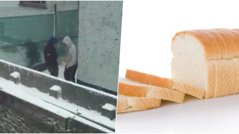 Video of dodgy bread dealings in Louth has gone viral during snowy weather