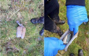 "Gardaí finds ""substantial"" sum of money stashed in socks as driver flees scene"
