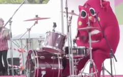 WATCH: Cuddly mascot rocking the absolute f**k out of these drums is bloody hilarious