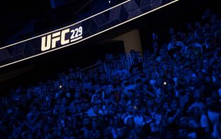 Las Vegas Police Department release statement following scenes of fans fighting after UFC 229