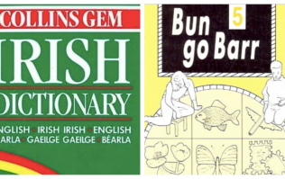 QUIZ: Can you guess what these Irish words mean in English?