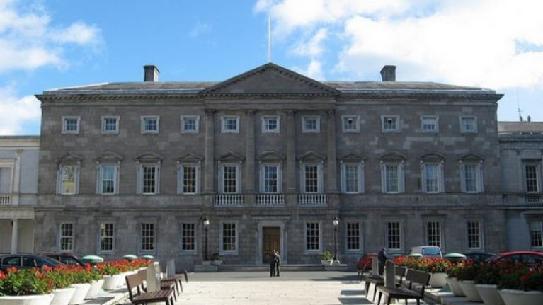 Dáil members' bar closed due to presence of large rat