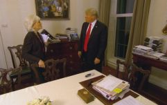 PICS: This Trump painting on display in the White House is just bizarre