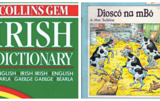 QUIZ: Can you guess what these Irish words mean in English? (Part Two)