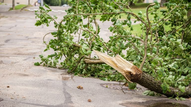 Several roads throughout Ireland are blocked, closed or impassable due to Storm Callum