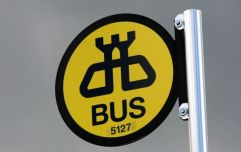 PIC: Man travelling across Europe finds a Dublin Bus Stop in the last place you'd expect