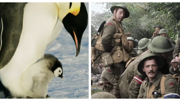 Clear your schedule this Sunday as there are three outstanding documentaries on TV