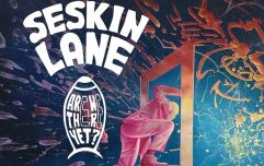 JOE's Song Of The Day #685: Seskin Lane 'Are We There Yet'
