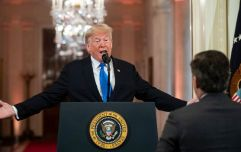 CNN reporter Jim Acosta has White House press pass reinstated after Donald Trump row