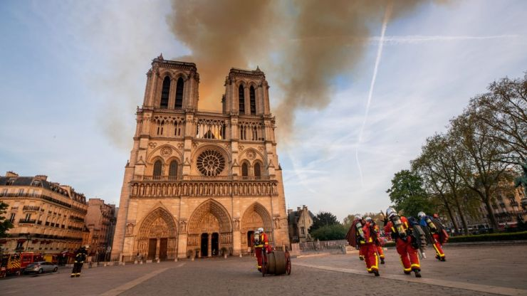 200,000 bees on Notre Dame roof survive fire