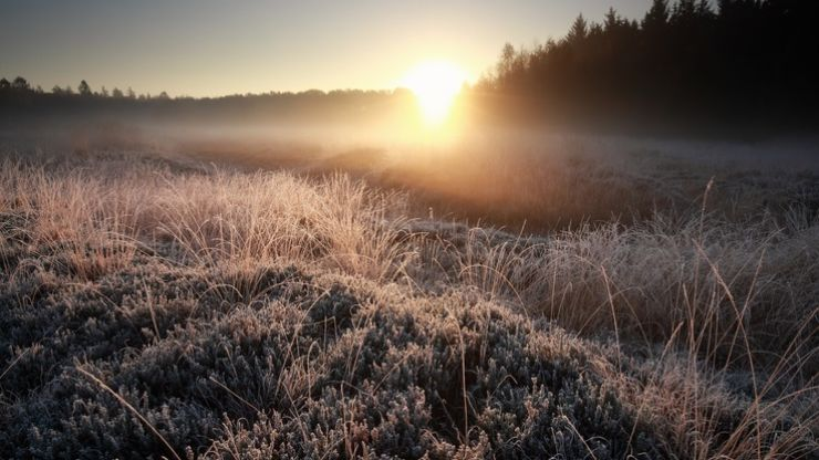 Temperatures to drop below freezing this weekend but it's good news besides