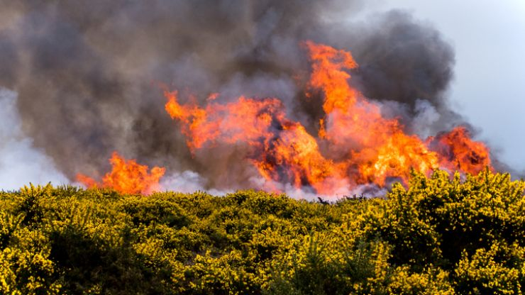 "Department of Agriculture issues a ""high fire risk"" warning for the rest of the week"