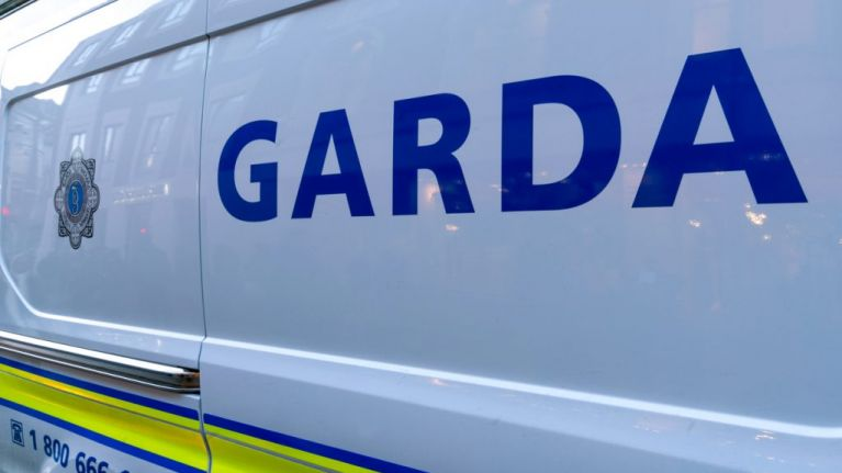 €120,000 of cocaine, shotgun shells and more seized by Gardaí in Limerick raid