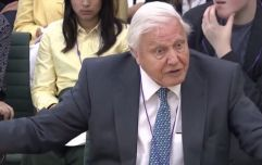 """The problems in the next 20 or 30 years are really major"" - David Attenborough calls for urgent climate emergency action"