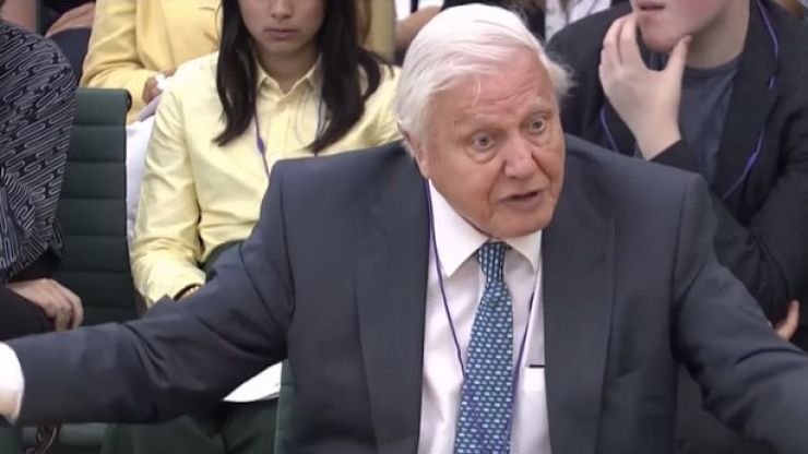 """""""The problems in the next 20 or 30 years are really major"""" - David Attenborough calls for urgent climate emergency action"""