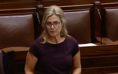 "Leo Varadkar announces demotion of Maria Bailey over ""swing-gate"""