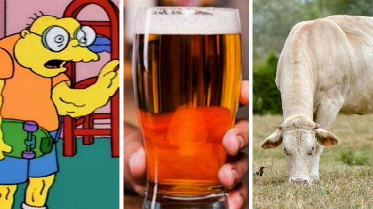 The JOE Friday Pub Quiz: Week 152
