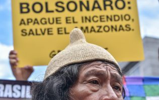 Brazilian president to send army to fight Amazon fire