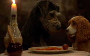 Disney have shared the first trailer for the live action Lady and the Tramp reboot