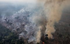 Brazil has rejected the $20 million aid offered by G7 leaders to fight Amazon fires
