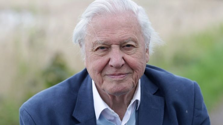 "David Attenborough says now is our ""last chance"" to address climate change"