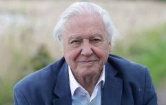 David Attenborough is making a new BBC documentary about what the future holds for our planet