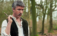 Aidan Gillen says Love/Hate fans are in for a treat with Season 5 of Peaky Blinders