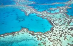"Outlook for Great Barrier Reef downgraded to ""very poor"" due to climate change"