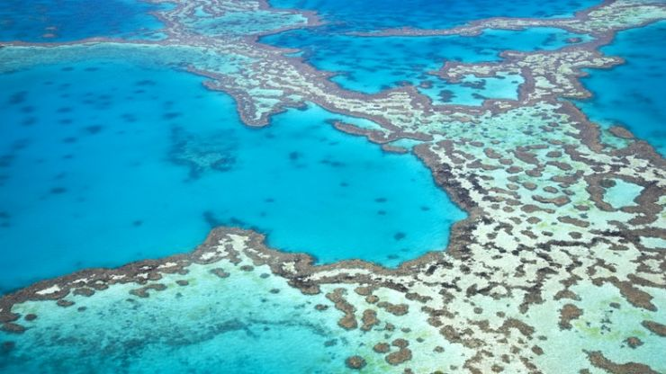 """Outlook for Great Barrier Reef downgraded to """"very poor"""" due to climate change"""
