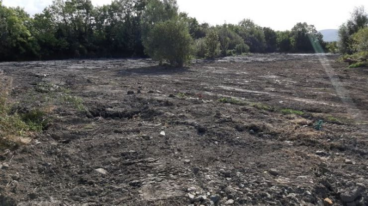 """""""Thousands of creatures wiped out"""" as Tallaght wetlands destroyed overnight"""