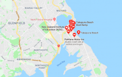 """Irish family"" blamed for trashing beach in New Zealand"