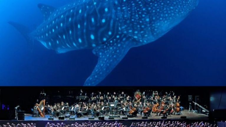 BBC's stunning Blue Planet II is returning to Ireland live in concert