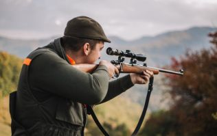American hunter pays $110,000 to kill rare mountain goat